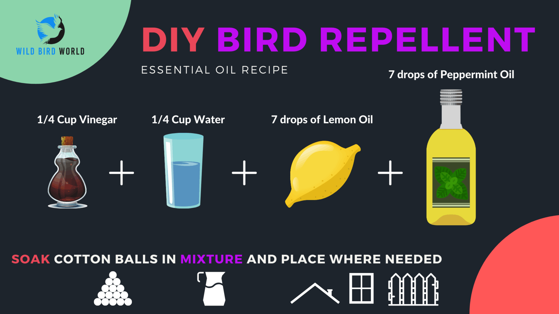 what smells repel birds DIY repellent